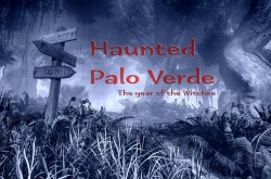 Haunted Palo Verde