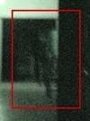 ShadowHallway2copy1459459272