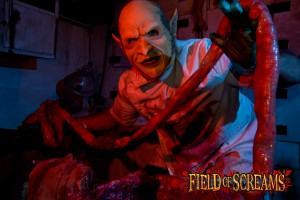 Field of Screams in Montville, PA