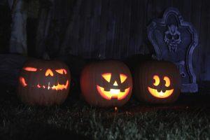 Pumpkinslawn021472066033