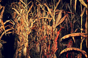 Top Haunted Houses in West Virginia - Miller's Nightmare Haunted Farm