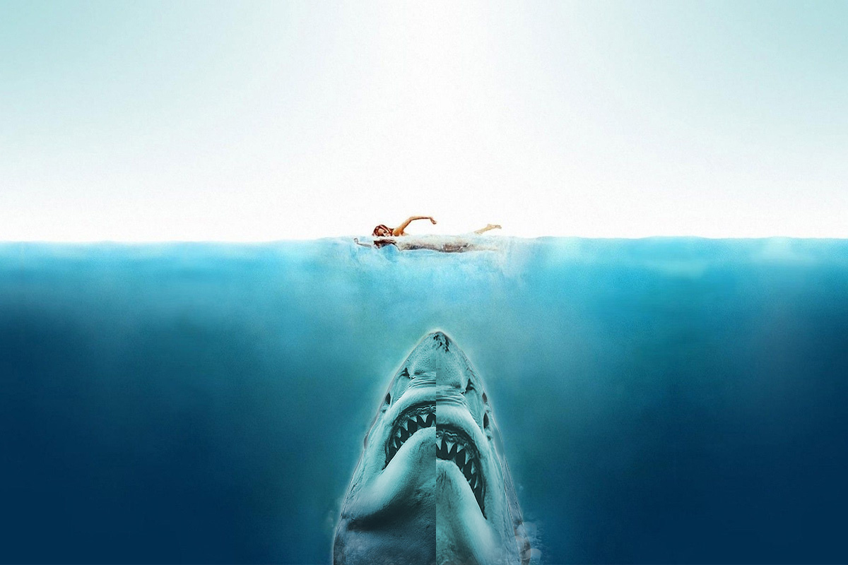 Real Jaws vs Original Jaws - photo by Euan Rannachan and poster by Roger Kastel