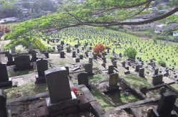 The Haunted Manoa Chinese Cemetery