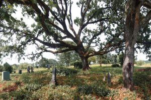 The Haunted Lafayette Pioneer Cemetery