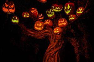 HalloweenTree1621030251